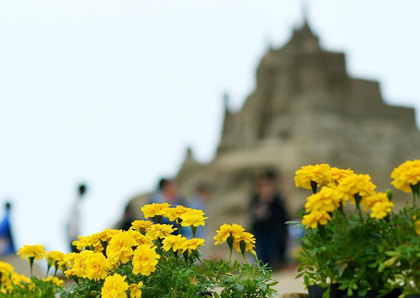 砂像と花々