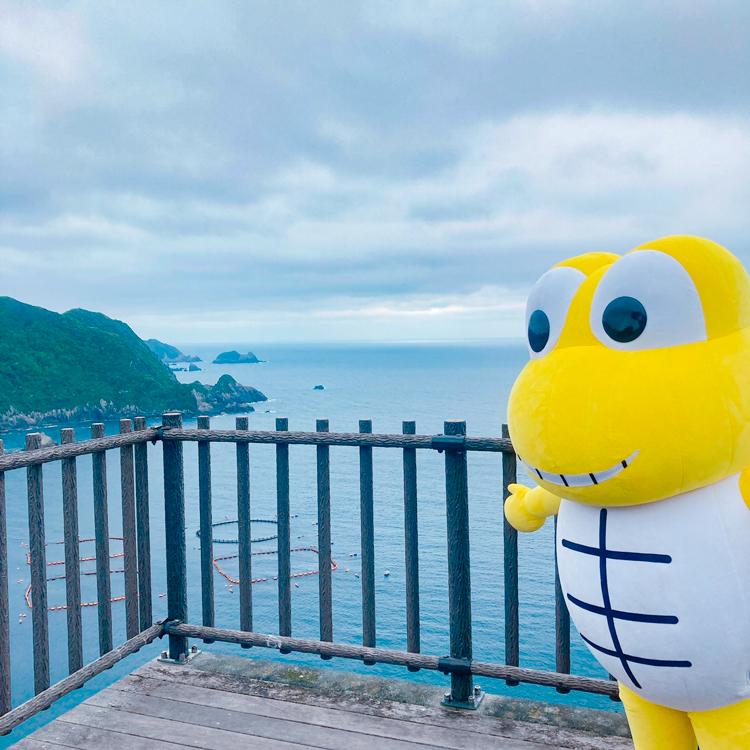 丸木崎展望所で海を眺めるサンディーくん